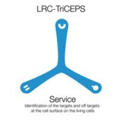 LRC-Service-September-2017