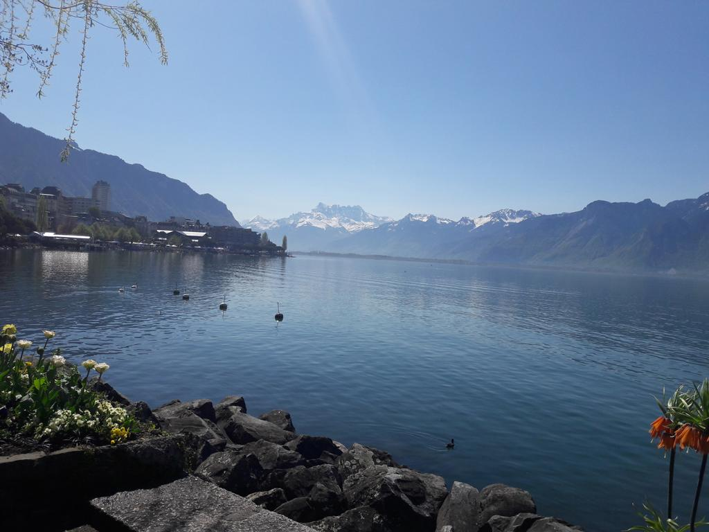 Dualsystems-LS2-Meeting-Montreux-Lake-view